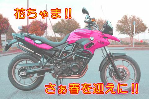 Yajiro4